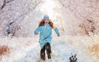 How Can I Keep My Pet Safe In the Winter?