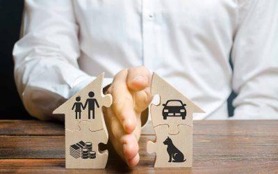 Does Connecticut Have Pet Custody Laws?